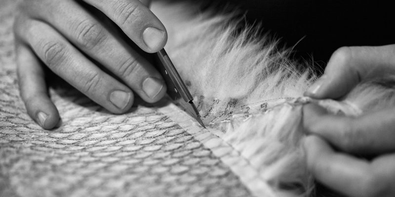 We Are Fur, Skills and Courses, Fashion